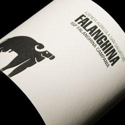San Salvatore Falanghina 2011